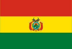 Covid datos Bolivia
